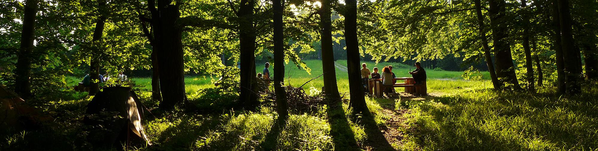Padokon ülő turisták az erdő szélén