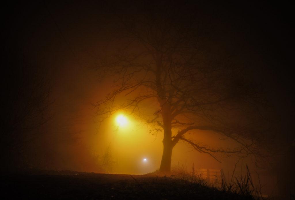 Utcai lámpa megvilágította kopasz fa