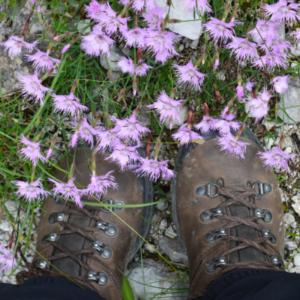 Vári Brigitta bakancsos lába virágok között