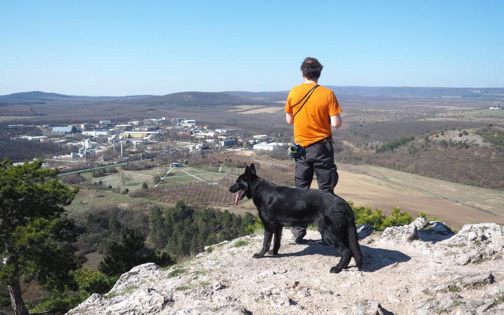 Szikla teteján álló turista a távolba néz, mellette egy fekete kutya