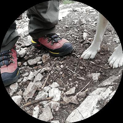 Gömöri István bakancsos lába, mellette két kutyaláb